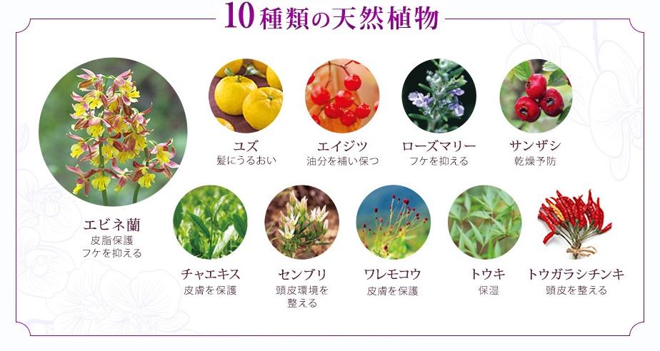 花蘭咲10種の植物エキス